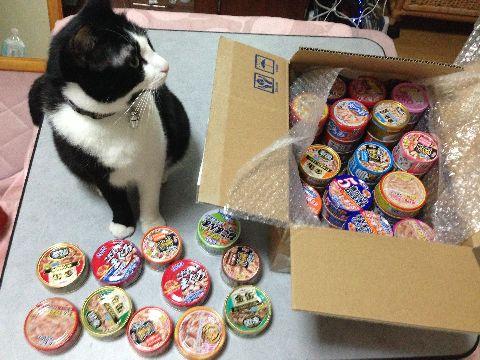 猫缶づくし
