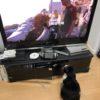 ネコ歩きを見る猫 2020